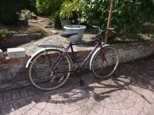 Gentleman's and Lady's Bikes For Sale